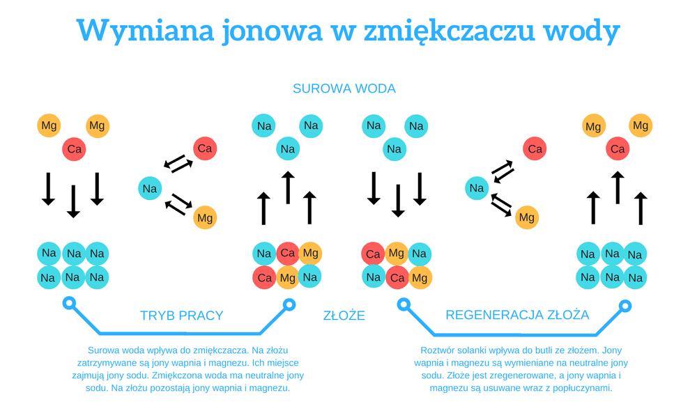 Schemat procesu wymiany jonowej